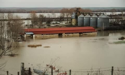 Κακοκαιρία: Πλημμυρισμένα 110.000 στρέμματα σε Έβρο και Ροδόπη