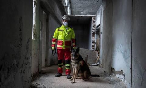 Επανεκκίνηση της κυνοφιλικής ομάδας έρευνας και διάσωσης του Ελληνικού Ερυθρού Σταυρού