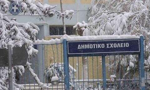 Κακοκαιρία: Κλειστά τα σχολεία την Παρασκευή (15/1) στην Φλώρινα