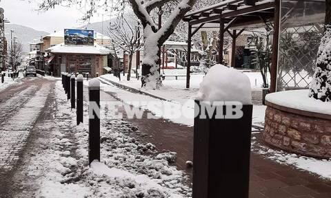 Ρεπορτάζ Newsbomb.gr: Μαγικές εικόνες από το χιονισμένο Καρπενήσι