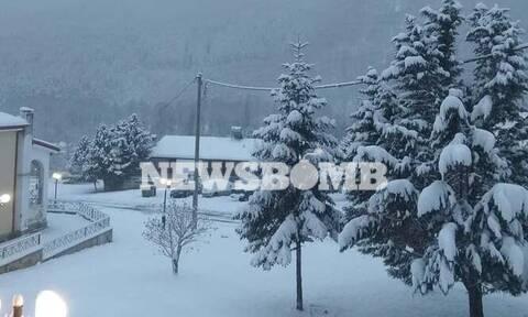 Ρεπορτάζ Newsbomb.gr: Κατάλευκο το τοπίο σε Φλώρινα και Εύβοια (pics)