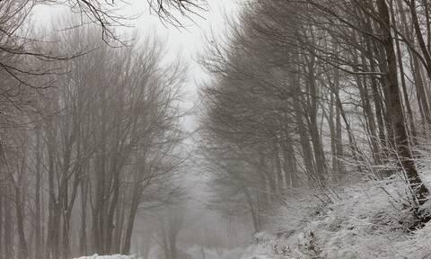 Ο καιρός σήμερα Κυριακή, 17 Ιανουαρίου