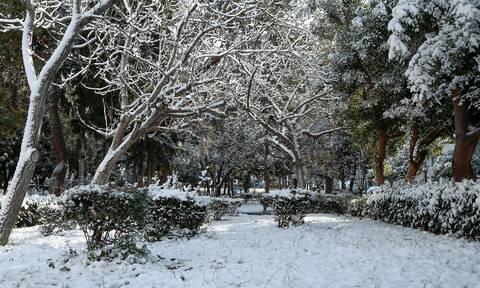 Κακοκαιρία «Λέανδρος»: Στην «κατάψυξη» και σήμερα η χώρα - Πολικό ψύχος και χιονοπτώσεις