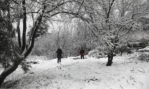 Κακοκαιρία Λέανδρος: Παγωνιά! Πού έδειξε -17 το θερμόμετρο - Πού θα χιονίσει σήμερα