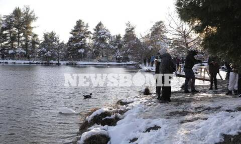Ρεπορτάζ Newsbomb.gr: Ούτε το Lockdown, ούτε ο «Λέανδρος» σταματούν τους Αθηναίους - Όλοι έξω με SMS