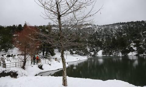 Καιρός: Ο «Λέανδρος» μας αποχαιρετά με χαμηλές θερμοκρασίες και παγετό - Πού θα χιονίσει