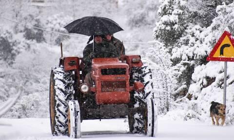 Καιρός: Στην «κατάψυξη» η Βόρεια Ελλάδα - Πού έδειξαν τα θερμόμετρα -19 βαθμούς Κελσίου