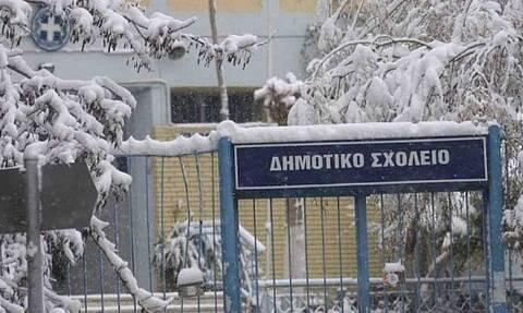 Κλειστά σχολεία την Τετάρτη (20/1) στην Δυτική Μακεδονία, λόγω ισχυρού ψύχους