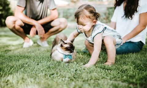 Δείτε πώς μια γάτα προστατεύει ένα μωρό όταν κοιμάται (vid)