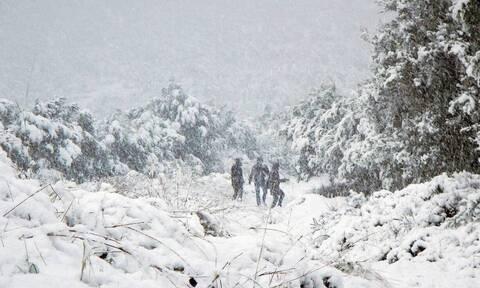 Κακοκαιρία «Λέανδρος»: Ανέβασε έως 30% τη χιονοκάλυψη της χώρας - Τι έδειξαν οι δορυφόροι