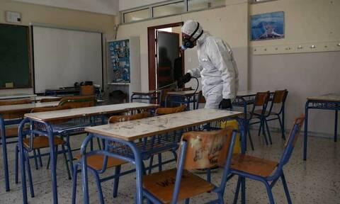 Κορονοϊός - Παγώνη: Τα σχολεία δεν μπορούν να παραμείνουν άλλο κλειστά