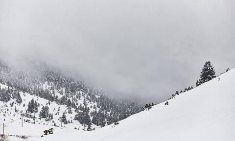 Χιονοδρομικό Κέντρο Βασιλίτσας: Χιονοστιβάδα καταπλάκωσε 27χρονο σκιέρ