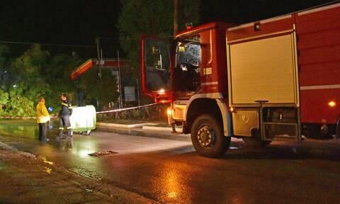 Κακοκαιρία: Πτώσεις δέντρων και διακοπές ρεύματος στην Κέρκυρα