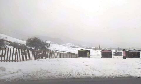 Κακοκαιρία - Ήπειρος: «Θάφτηκαν» στο χιόνι Μέτσοβο, Τζουμέρκα και Κόνιτσα