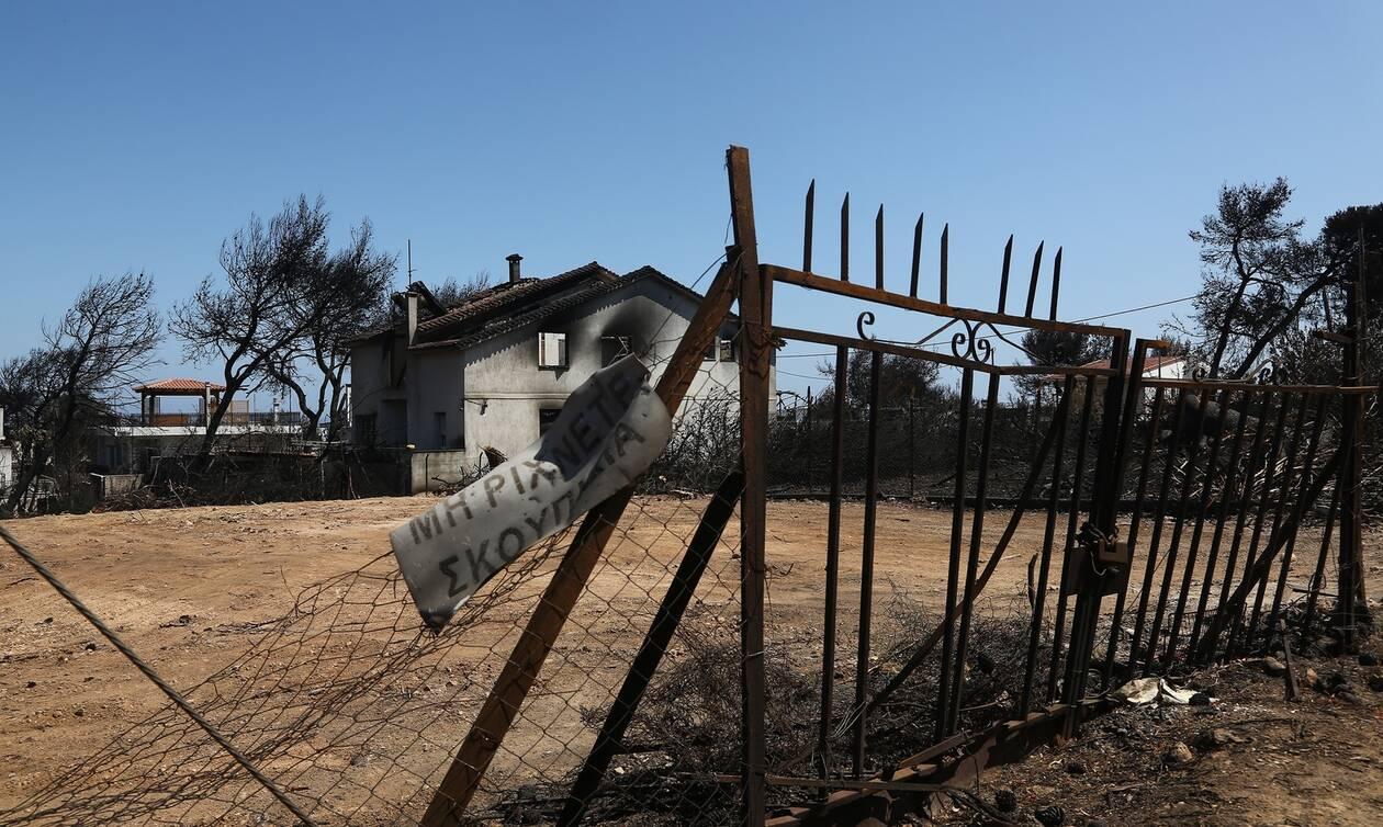 Φωτιά στο Μάτι: «Καταπέλτης» η Βαρβάρα Φύτρου - Αν είχαν κινητοποιηθεί θα είχαν εντοπίσει την Εβίτα