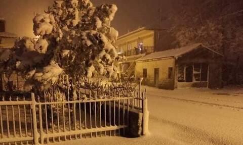 Καιρός: Στα «λευκά» η Ορεστιάδα – Χιονοκαταιγίδα στη Ροδόπη (vid)