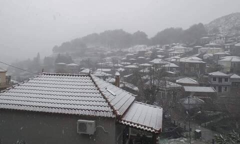 Κακοκαιρία: Χιονίζει στη Μυτιλήνη - Προβλήματα στο οδικό δίκτυο
