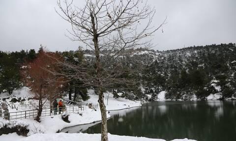 Καιρός: Με χαμηλές θερμοκρασίες η Πέμπτη - Πού και πότε θα χιονίσει