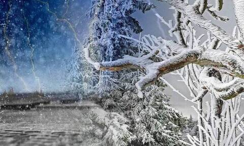 Καιρός - Αρνιακός: Στα... ύψη ξανά ο υδράργυρος! Ερχεται θερμή εισβολή, μετά τις 10/2 η ψυχρή...