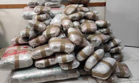 Θεσπρωτία: Έκρυψαν πάνω από 167 κιλά κάνναβης μέσα σε κορμούς δέντρων