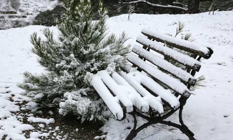 Καιρός: Ψύχος «τέρας» ίσως χτυπήσει τη χώρα το Σαββατοκύριακο - Σε ποιες περιοχές αναμένονται χιόνια