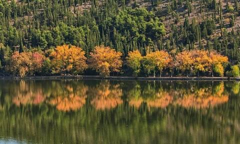 Φθινόπωρο στην Ελλάδα: Επτά φωτογραφίες υπενθυμίζουν ομορφιές του τόπου μας
