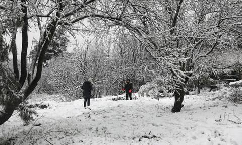 Κακοκαιρία: Έρχεται τριήμερος χιονιάς από το Σάββατο - Πού θα χιονίσει