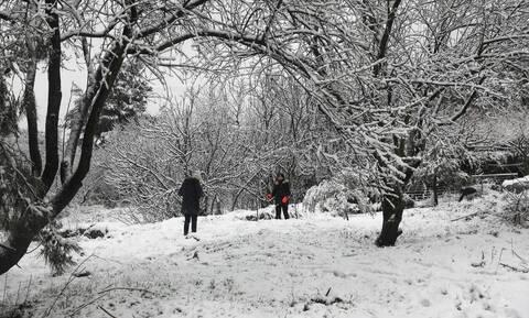 Καιρός - Καλλιάνος: Έρχεται ισχυρός χιονιάς από το Σάββατο – Πού θα χτυπήσει η κακοκαιρία