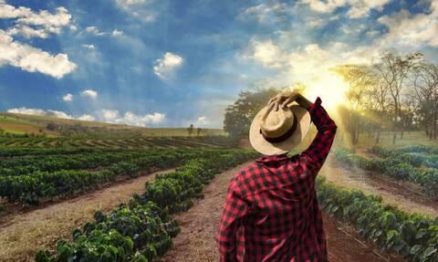 Σε λειτουργία η υπηρεσία για την έκδοση βεβαίωσης επαγγελματία αγρότη