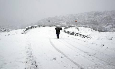 Κακοκαιρία Μήδεια: Προειδοποίηση Μαρουσάκη - «Πολικό εξπρές για 10 μέρες, χιόνια και στην Αττική»
