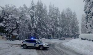 Циклон «Медея» принесет в Грецию снегопады и сильный ветер