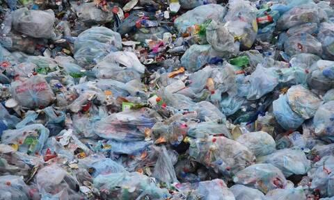 Η συμμετοχή πολλών εταιρειών προϋπόθεση για την ενίσχυση του εγχώριου συστήματος ανακύκλωσης