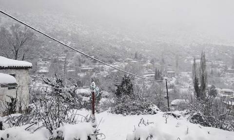 Καιρός ΤΩΡΑ: Η «Μήδεια» επελαύνει – Δείτε live πού χιονίζει στη χώρα