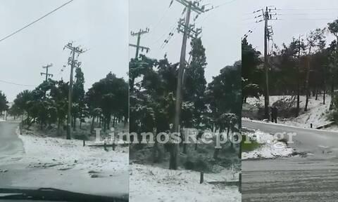 Προβλήματα από την κακοκαιρία «Μήδεια» στη Λήμνο: Κλειστά αύριο τα σχολεία - Εγκλωβίστηκαν οδηγοί