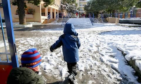 Κακοκαιρία «Μήδεια»: «Λουκέτο» σε πολλά σχολεία της χώρας - Δείτε ποια είναι κλειστά σήμερα (15/02)