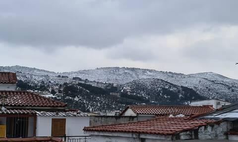 Κακοκαιρία Μήδεια: Δραματική έκκληση του Δημάρχου Σκιάθου στο Newsbomb.gr - «24 ώρες χωρίς ρεύμα»