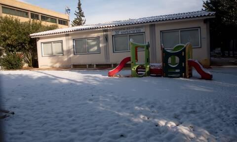 Κακοκαιρία «Μήδεια» - Κλειστά σχολεία σήμερα 16/02: Με τηλεκπαίδευση τα μαθήματα - Πότε θα ανοίξουν