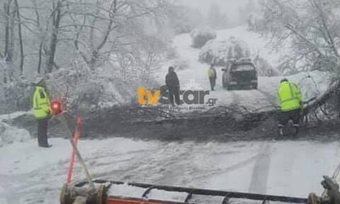 Στο έλεος του χιονιά η Εύβοια: Αποκλεισμένα χωριά, χωρίς ρεύμα - Πού εντοπίζονται προβλήματα