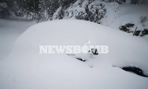 «Θάφτηκε» η Πολιτεία: Στο ένα μέτρο έφτασε το χιόνι - Απίστευτες εικόνες