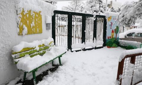 Κακοκαιρία «Μήδεια» - Θεσσαλονίκη: Σε ποιες περιοχές ανοίγουν αύριο τα σχολεία - Πού είναι κλειστά