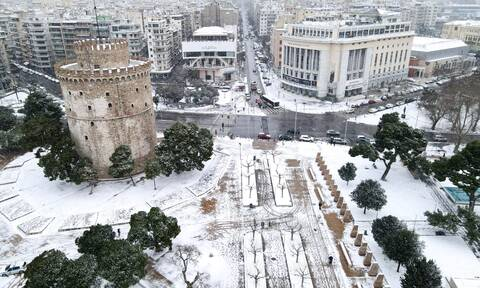 Θεσσαλονίκη: Αλλάζει το κέντρο της πόλης - Κόβονται 41 δέντρα στην Τσιμισκή λόγω επικινδυνότητας