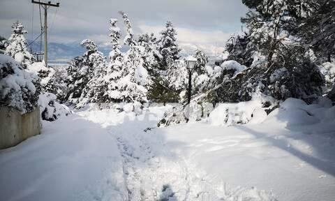 Κακοκαιρία «Μήδεια»: Οι εντυπωσιακές φωτογραφίες της επέλασης του χιονιά από το διάστημα