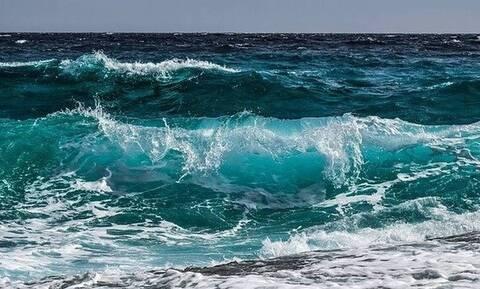 Θάσος: Απίστευτο! Δείτε τι ξέβρασε η θάλασσα