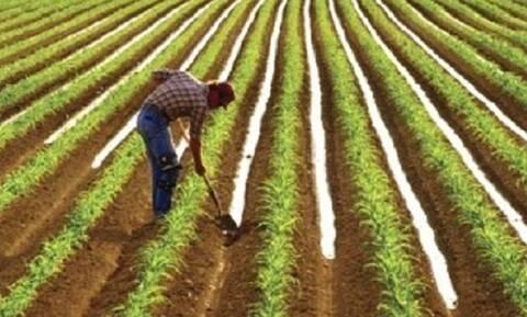 Ποιες αλλαγές έρχονται στις αγροτικές επιδοτήσεις από το 2022