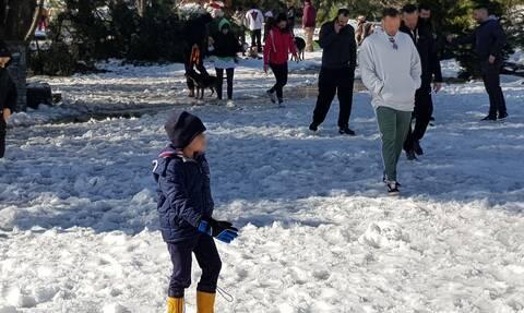 Καιρός: Έρχεται χιονιάς τον Μάρτιο ή θα έχουμε πλημμύρες; - Τα σενάρια από τον Κλέαρχο Μαρουσάκη