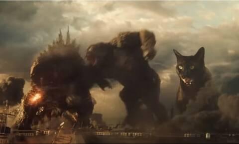Επικό: Γκοτζίλα και Κινγκ Κονγκ παλεύουν με μια γάτα-γίγαντα! (vid)