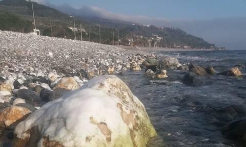 Λάρισα: Υποχώρησε η θάλασσα στη Βελίκα κατά μισό μέτρο (pics)
