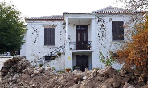 Σεισμός Ελασσόνα: Πώς τα ζώα «προειδοποιούσαν» για το χτύπημα πριν γίνει αισθητό στους ανθρώπους;