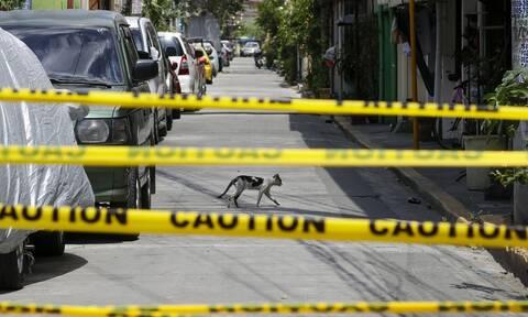 Αδιανόητο: Σκότωσε το φίλο του με κουζινομάχαιρο και τον «τάισε» στις αδέσποτες γάτες