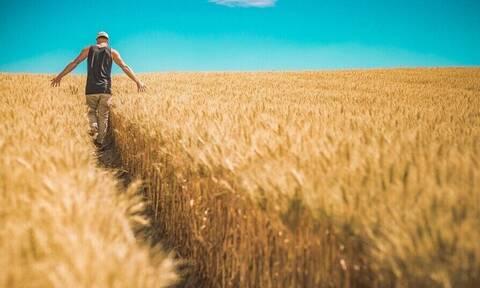 Νέα δεδομένα στην μετάκληση εργατών γης - Τι ισχύει για το 2021